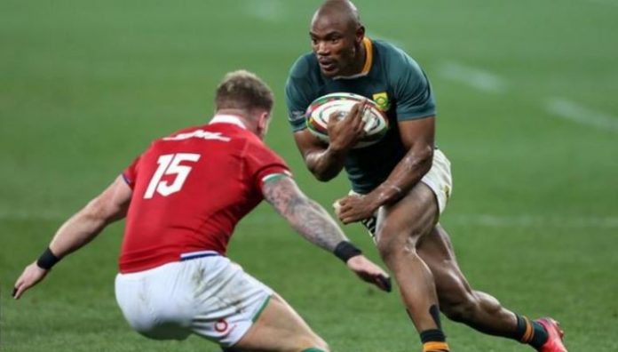 South Africa 27-9 British And Irish Lions: Springboks Level Series In Fiery Encounter - SportRazzi